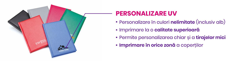 Personalizare Agende Domino