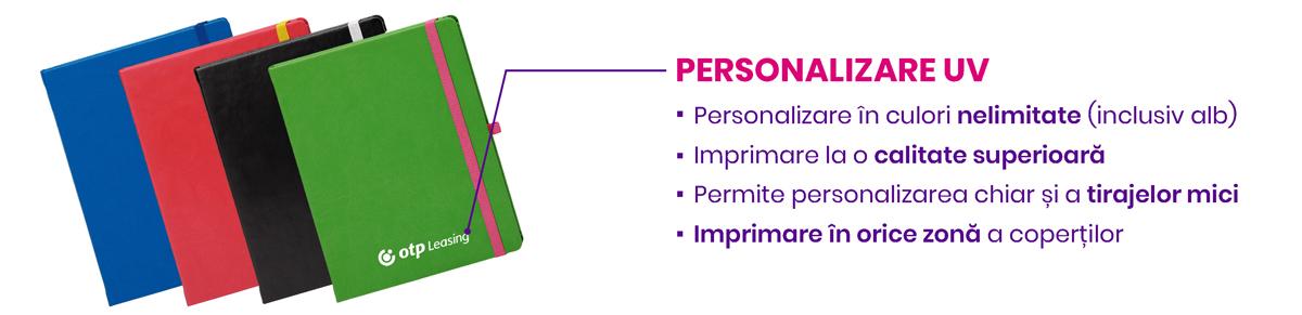 Personalizare agende Notebook PRO