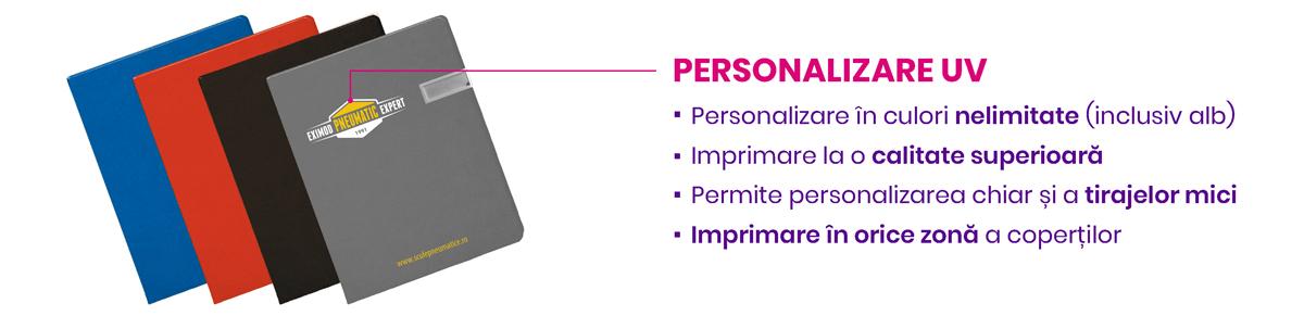 Personalizare agende Notebook USB