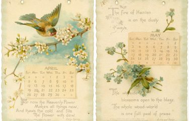 istorie calendare